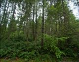 Primary Listing Image for MLS#: 651693