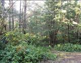 Primary Listing Image for MLS#: 1239031